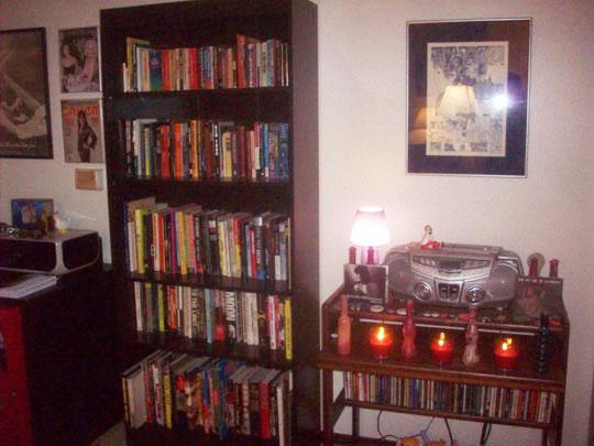 13. bookcaseone_dec13.jpg