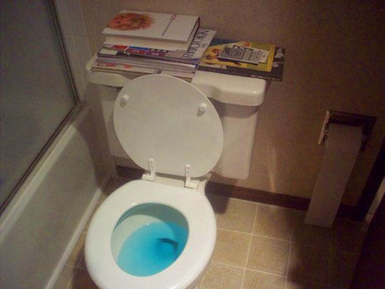 29. toiletreadingmaterial_dec13.jpg