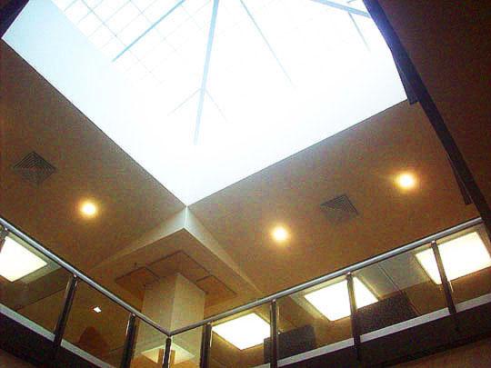 16. skylightoverhead_feb7.jpg