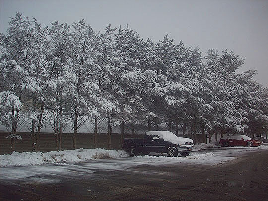 2. winterwonderland_March7.jpg