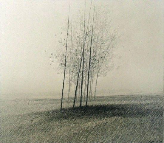 Kipniss Misty Trees.jpg