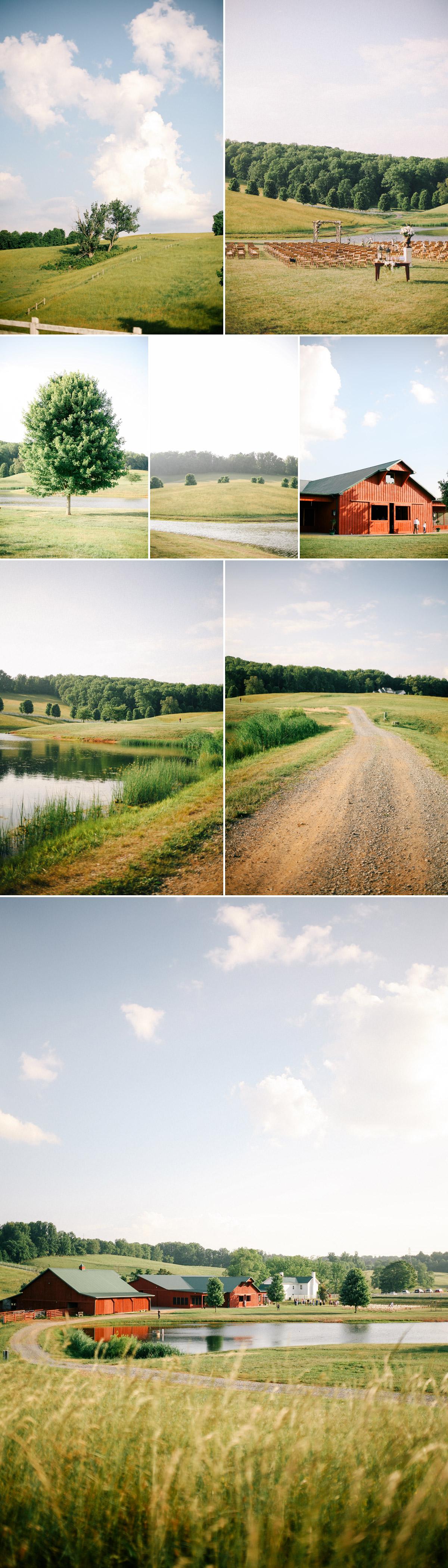 Blog-Collage-1401688160553.jpg