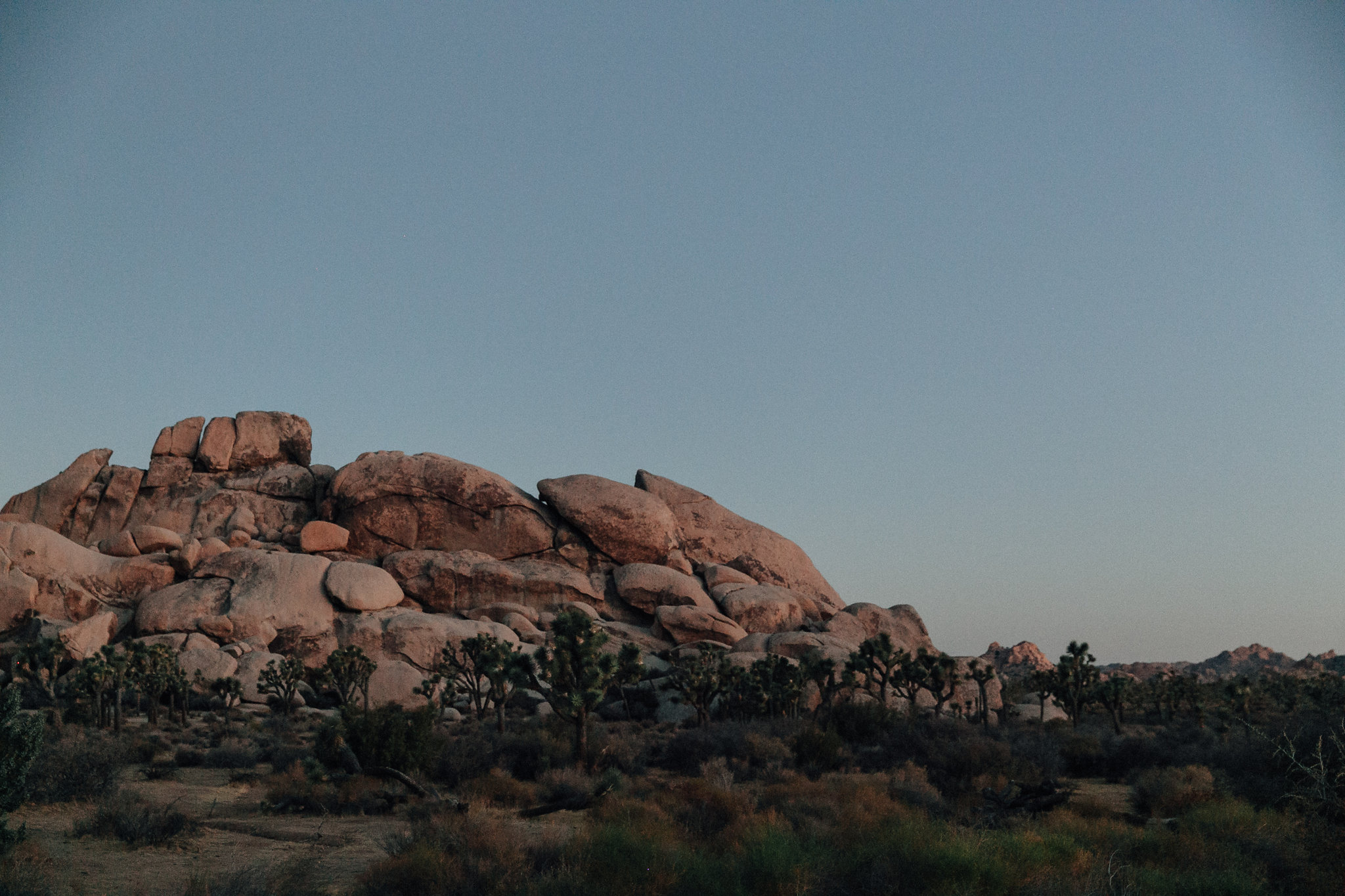 joshua-tree-engagement-session_marble-rye-photography-JA1.JPG