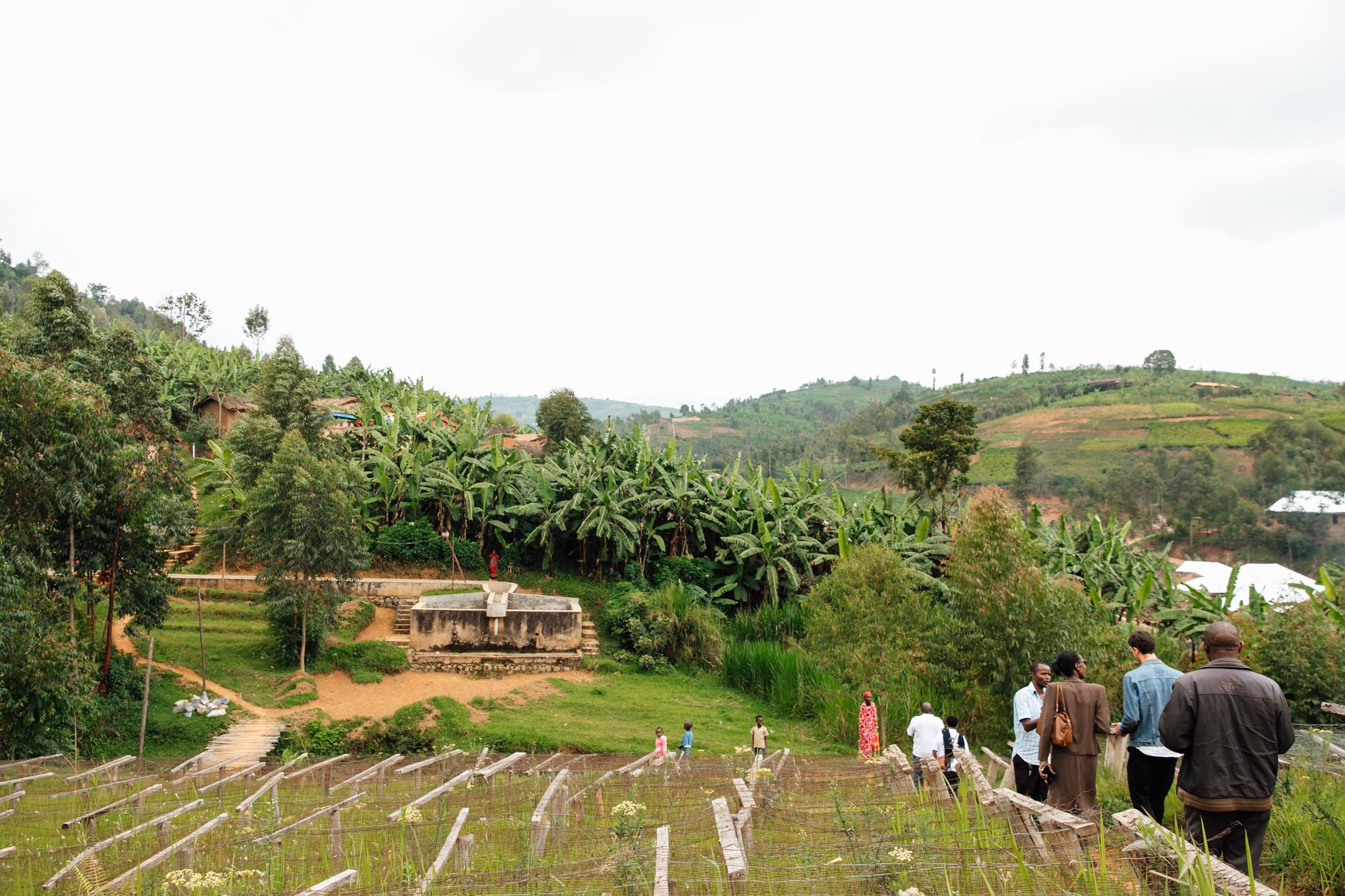 KINYOVU WASHING STATION, burundi
