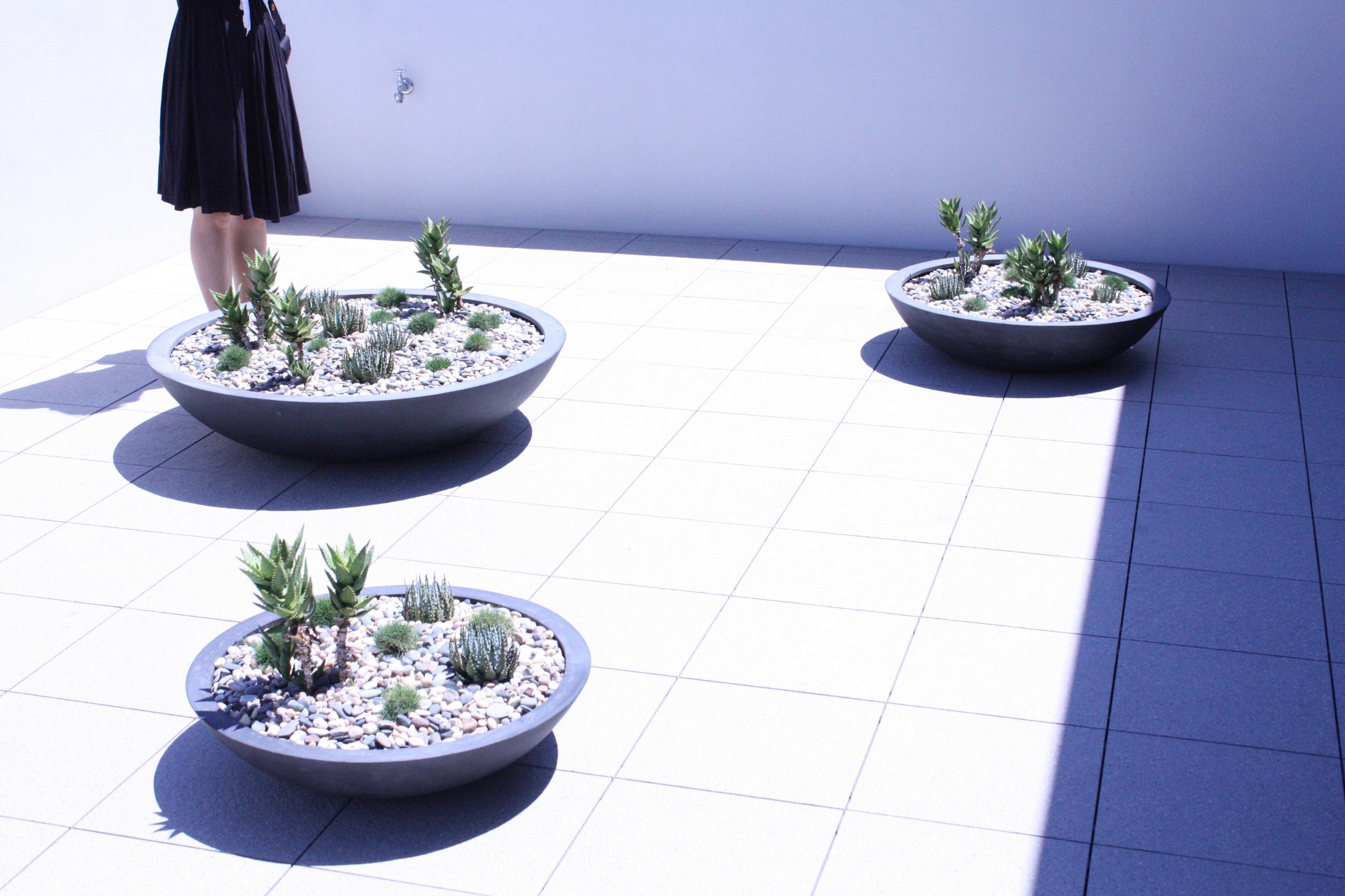 hamilton-rooftop-landscape-design-SEED6.JPG