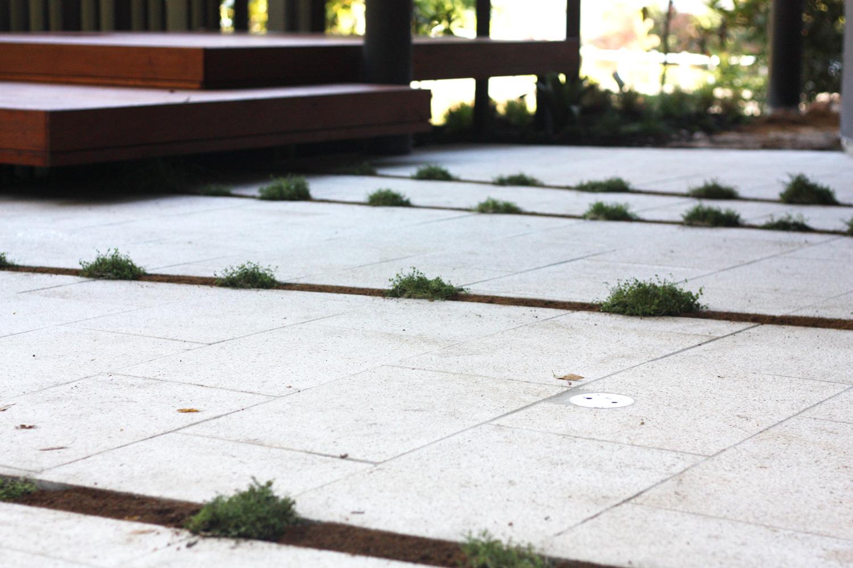 bardon-vegetated-stripsi.jpg