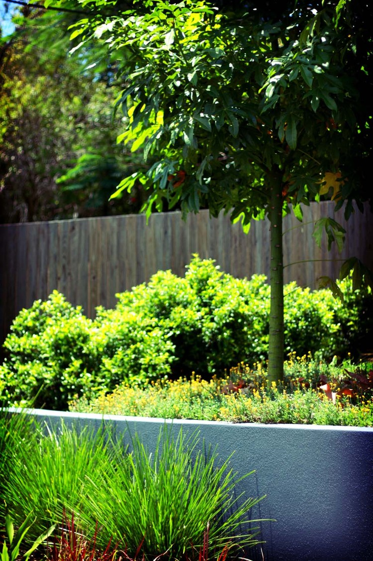 Bulimba, QLD    Pool and entertaining area created for a family lifestyle.  Read more...