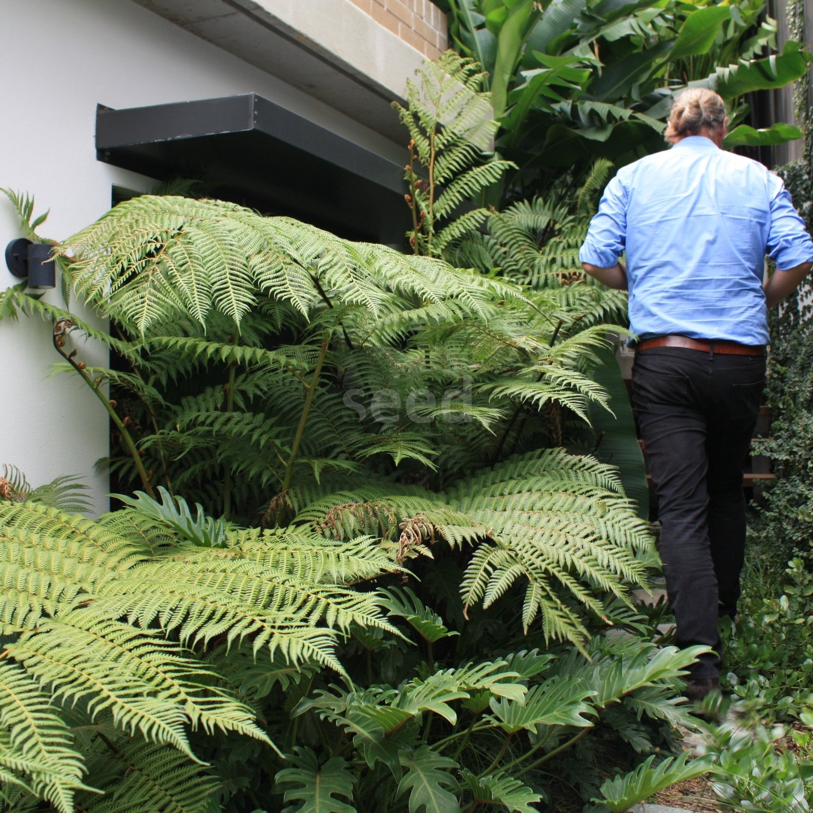 Let's go! It is so lush and inviting as we meander up, down and through a variety of spaces.