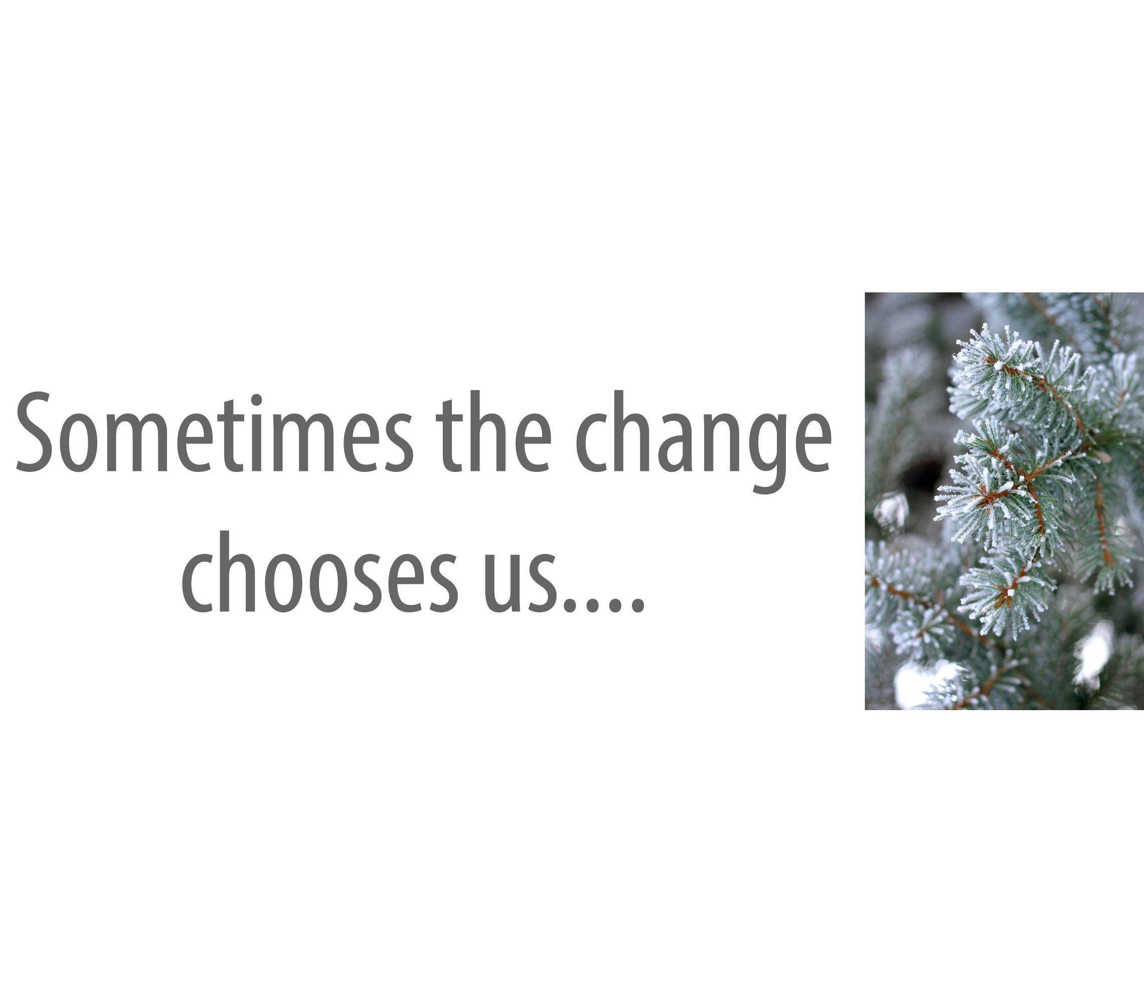 Lynn'sChoice1_0000_Sometimes the change          chooses us.....jpg
