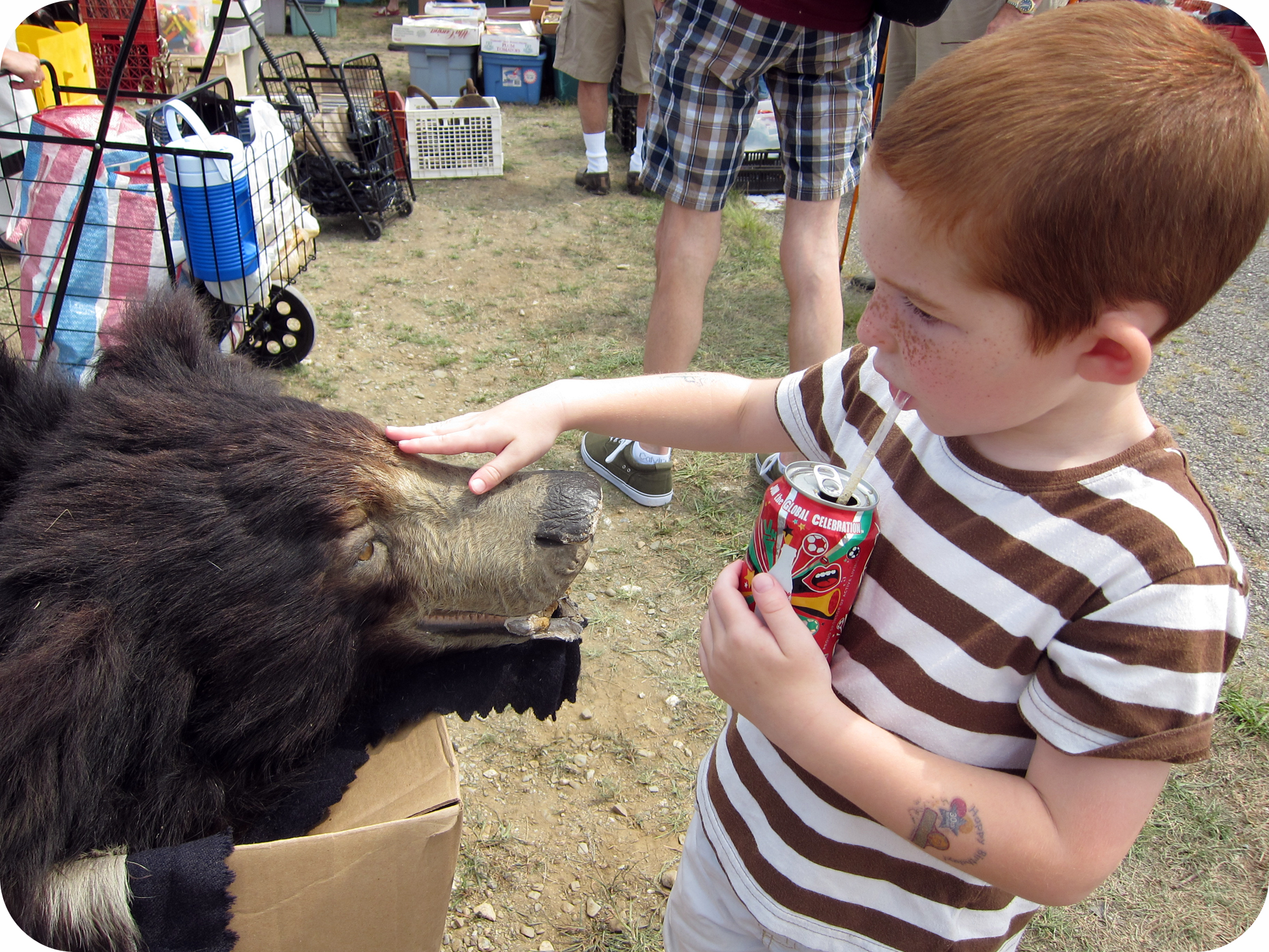 boy petting bear.jpg