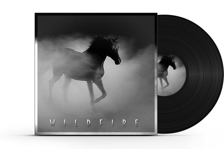 Vinyl-Record-Album-Cover-Gr.jpg