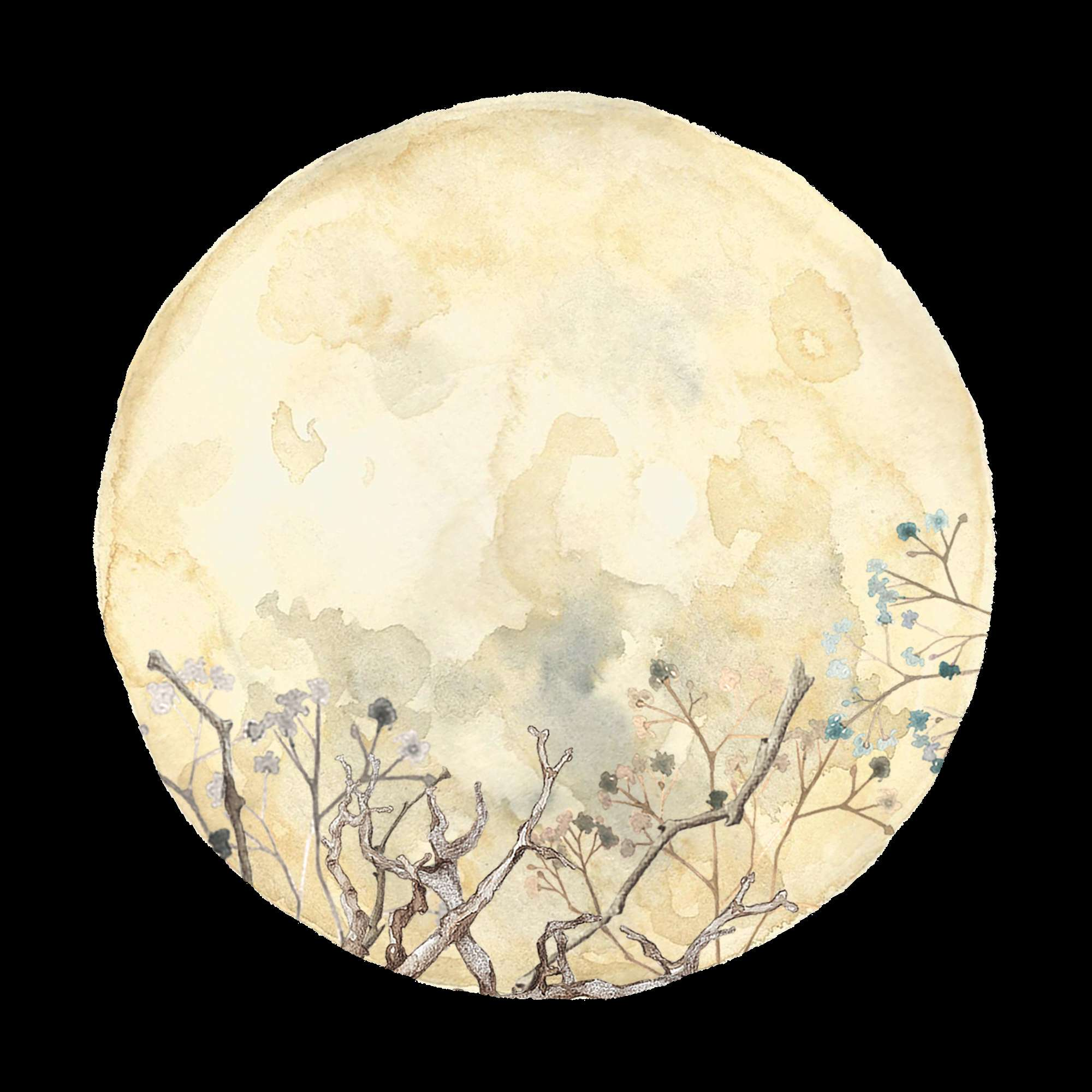 JOIN THE MOONCLUB - weekly lunar astrology videos, new & full moon horoscopes, a monthly live call & more BY THE LIGHT OF THE MOON $23/month or $25/one month