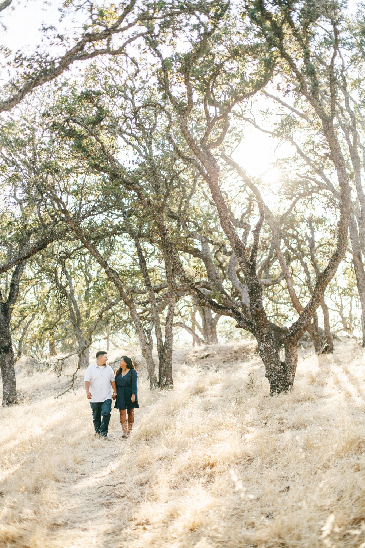 chris-diana-engagement-session-in-walnut-creek-california-01