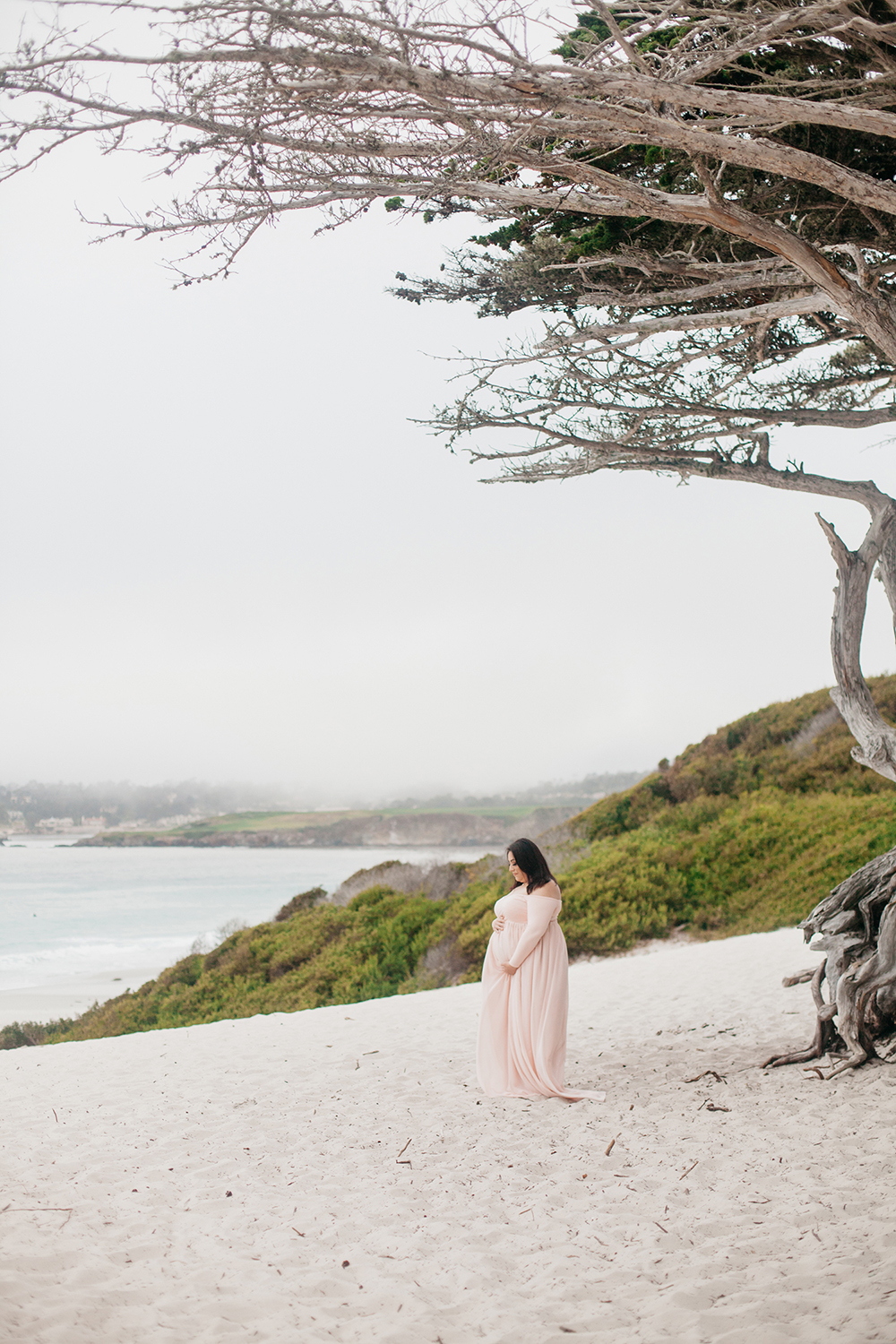 Pregnant woman in a long dress standing under a tree in Carmel-by-the-sea.