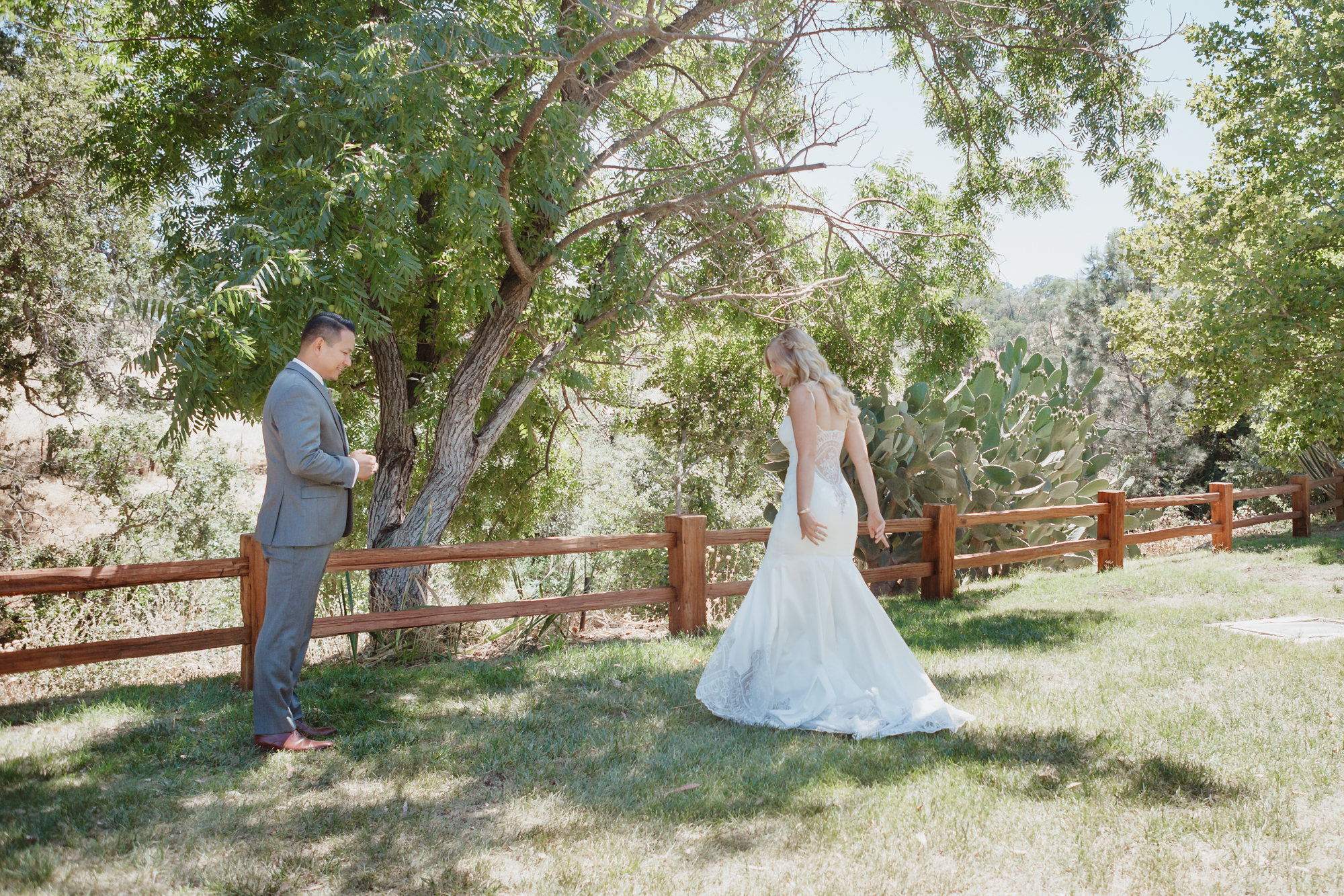 field-and-pond-wedding-winters-ca