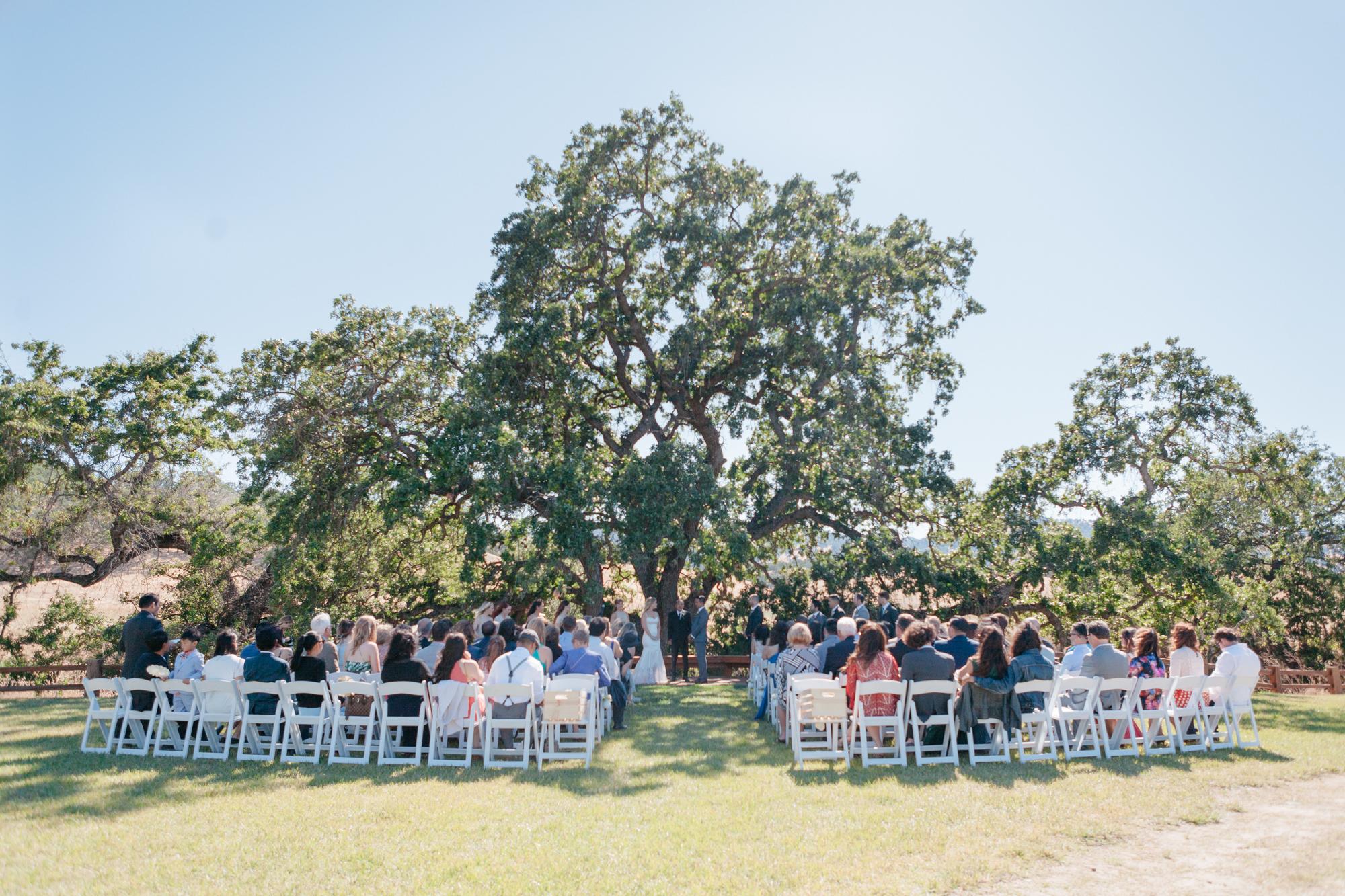 sacramento-wedding-winters-ca