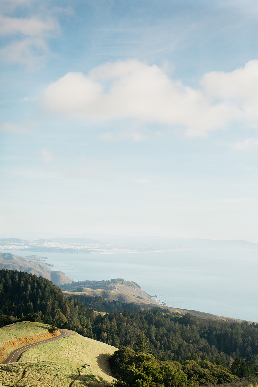 Landscape view of Mt. Tamalpais during engagement session.