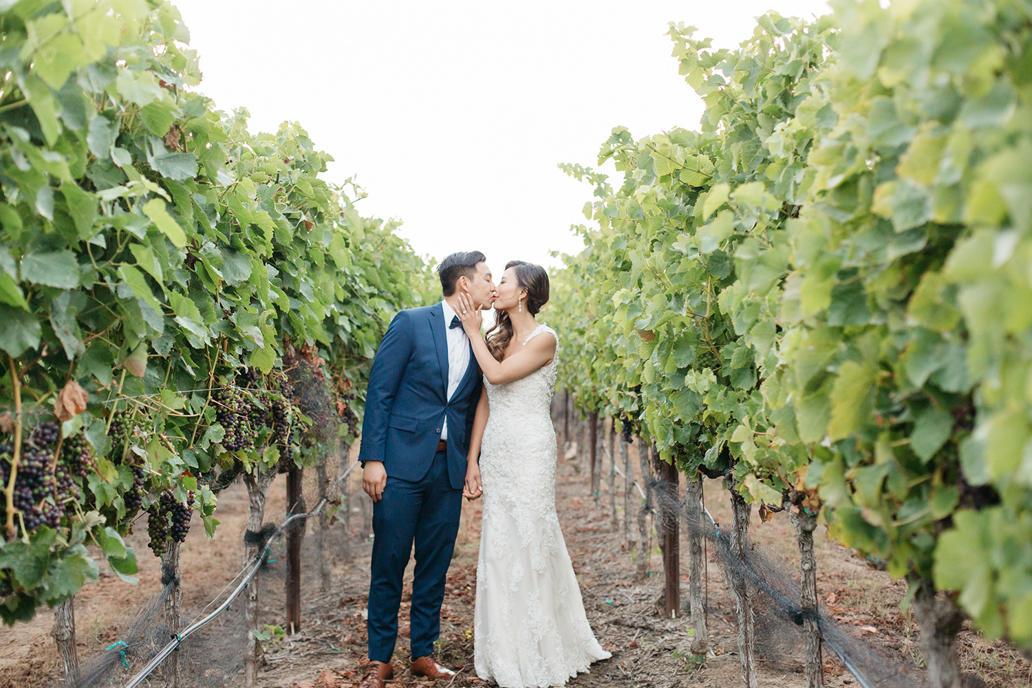 sunset portrait of bride and groom kissing in wedding at eagle vines golf club in napa california