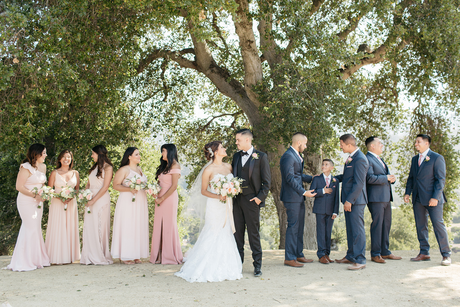 Bridesmaids dressed in blush gowns, groomsmen, bride and groom hanging out under a big tree.