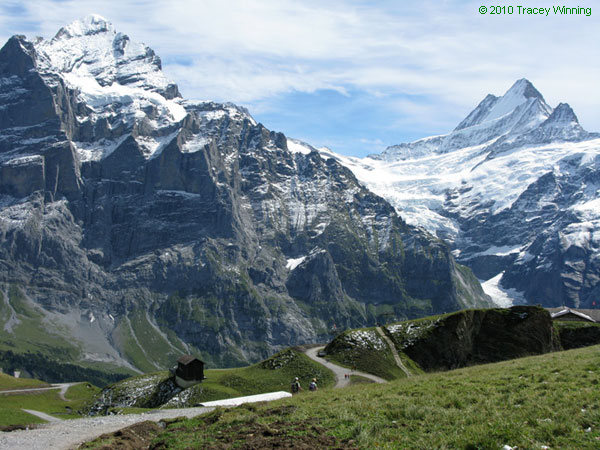 Grindelwald Switzerland