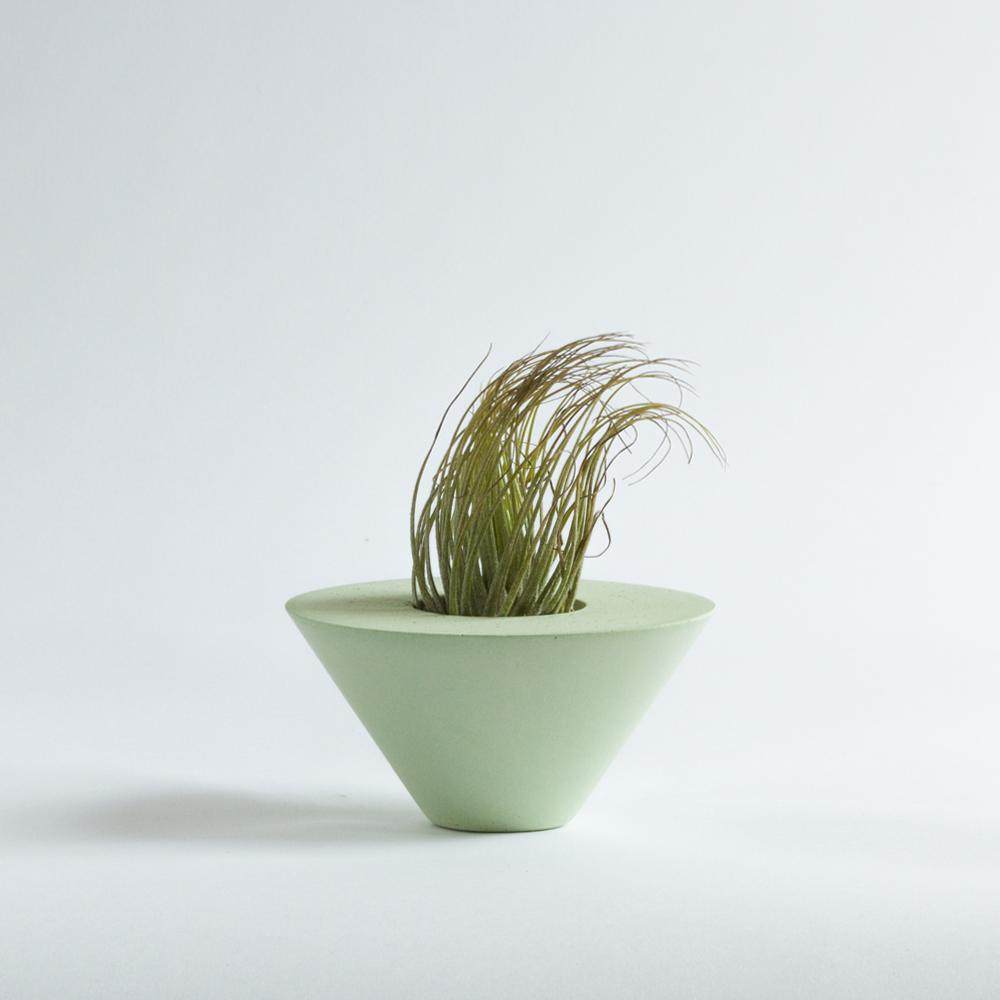 AIR PLANT CONE [GREEN] + TILLANDSIA   Sukurtas išskirtinai oriniams augalams, geometrinės formos indas pagyvins bet kokią erdvę.  Dydis: 6cm x 11,5cm  Kaina: