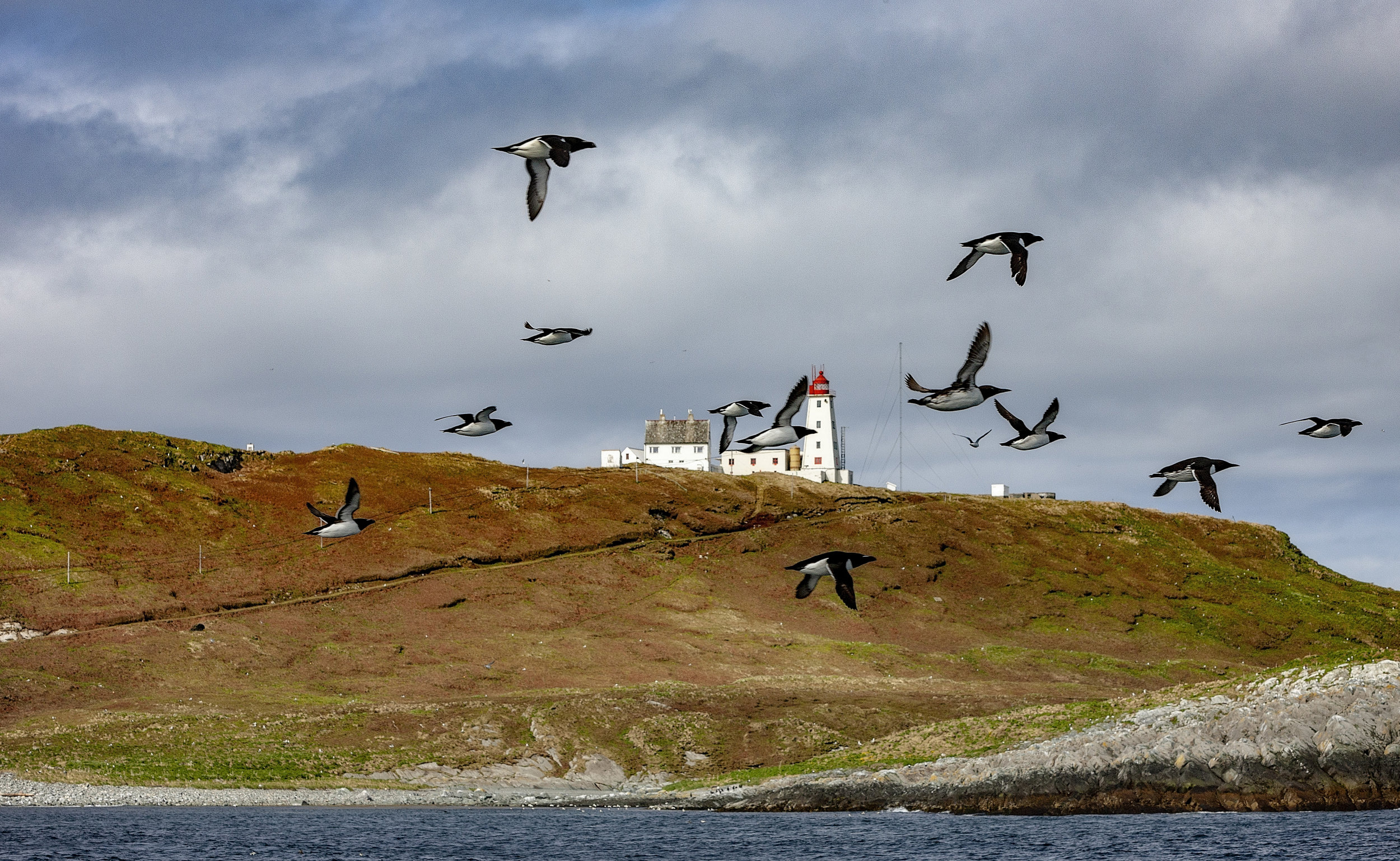 KAN LEIES: Vil du bo på Hornøya et døgn eller mer, leies den gamle fyrvokterboligen ut deler av året.