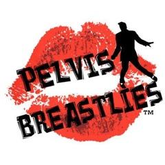The Pevlis Breastlies – March 9, 2013 – Red Light Café, Atlanta, GA