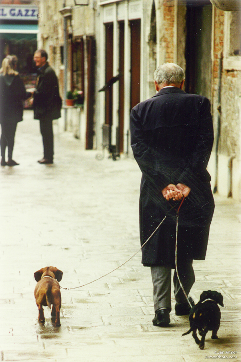 MAN AND DOGS.jpg