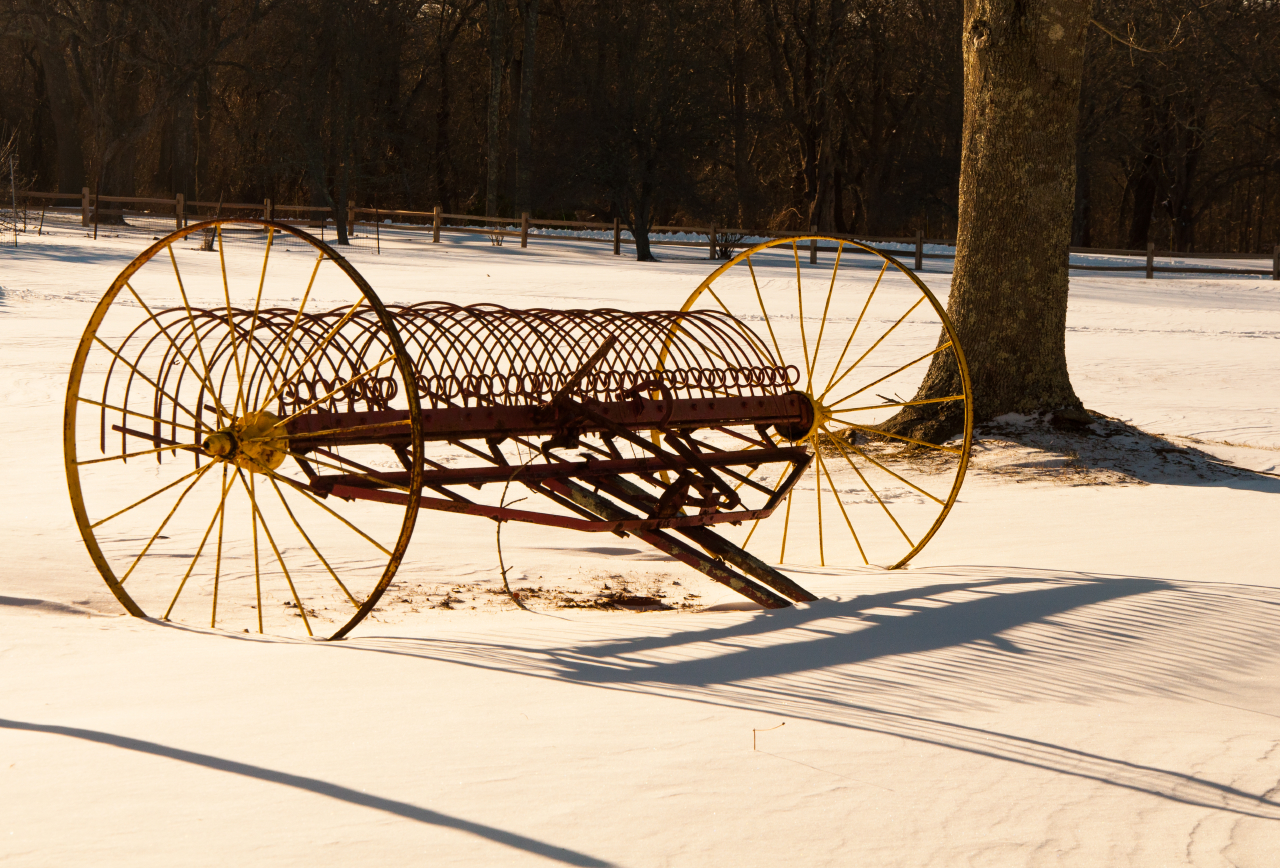 Bob Camiaux-Snow and Wheels.JPG
