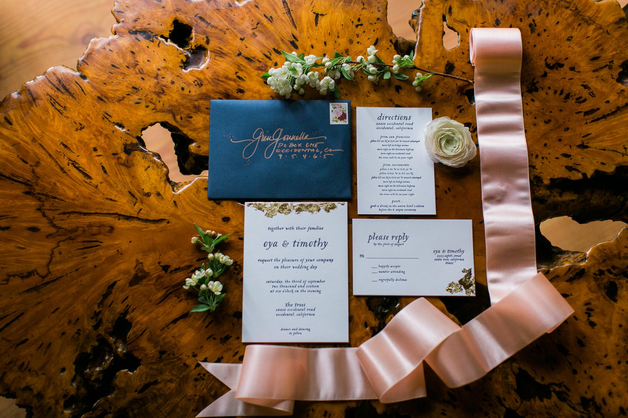 Wedding Collection Shoot Sonoma County The Trees Maria Villano-29.jpg