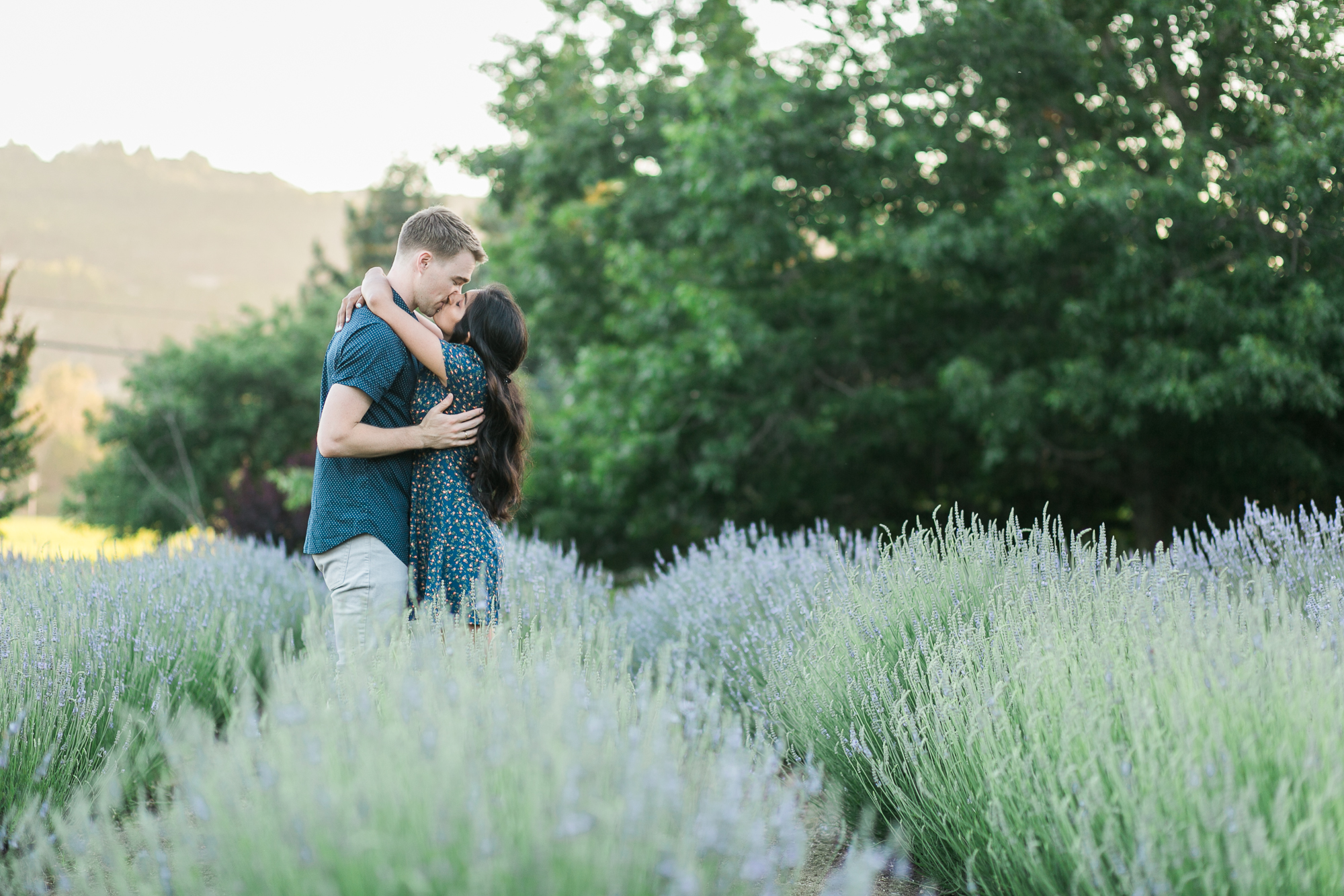 santa rosa engagement photographer, Santa rosa photographer, engagement photographer, matanzas creek engagement, lavender field engagement, sonoma county engagement photographer, sonoma wedding photographer, best wedding photographer, best engagement photographer, where to do engagement photos sonoma county, maria villano photography