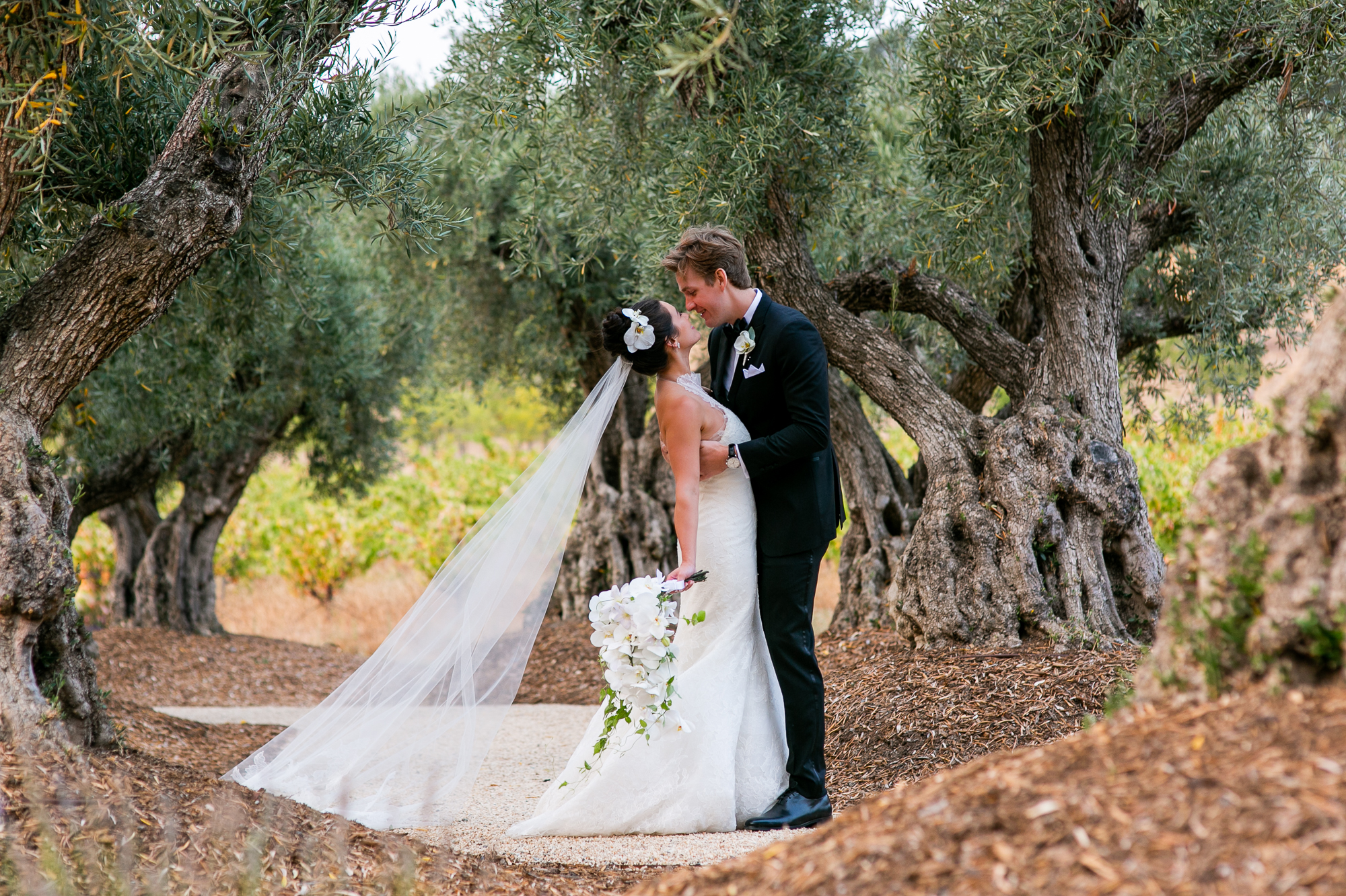 Rus Farm Healdsburg Wedding Photographer-62.jpg