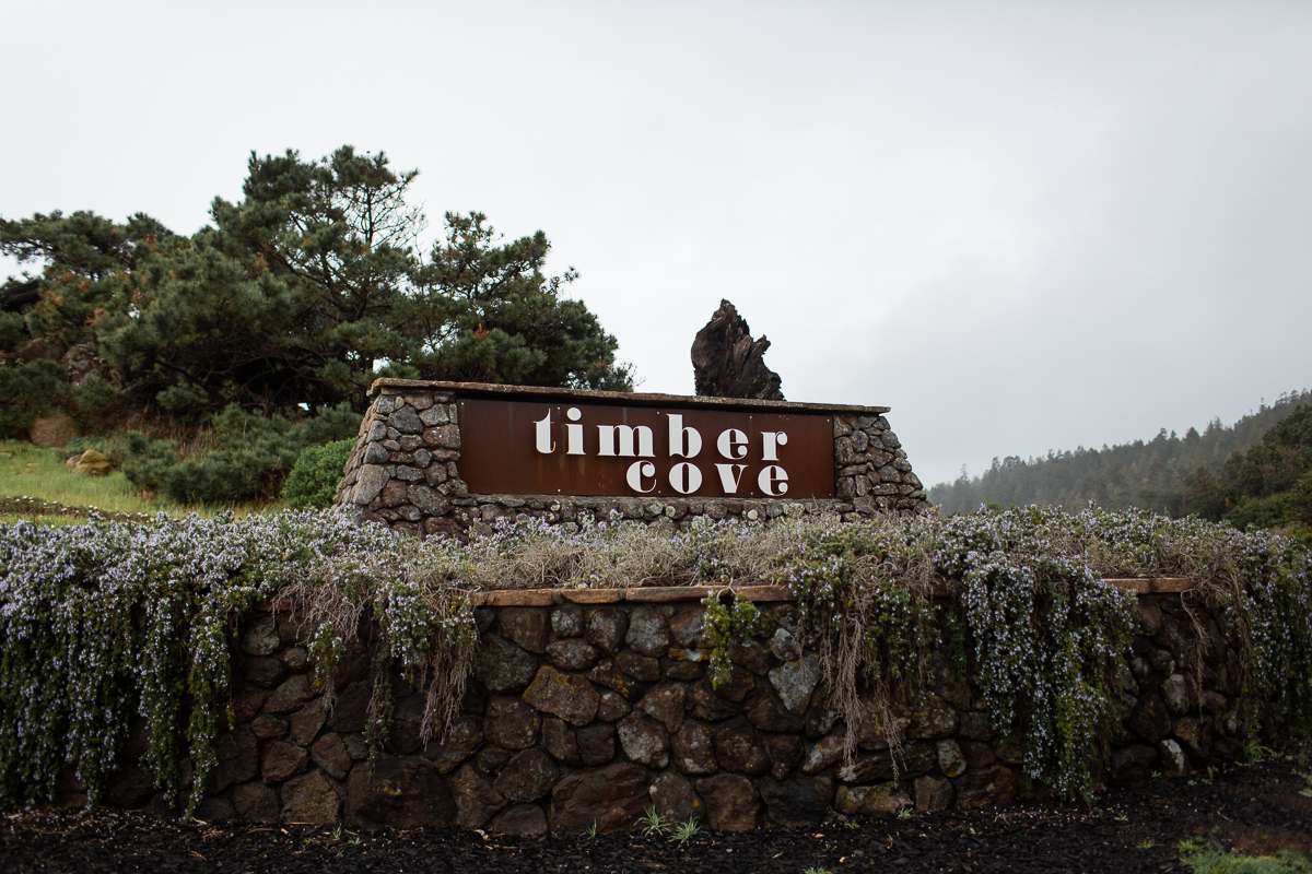Timber Cove Elopement Maria Villano Photography-1.jpg
