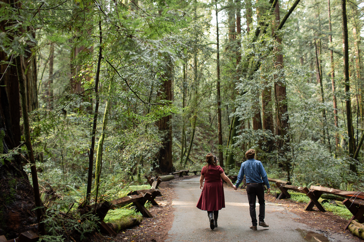 Armstrong Woods Engagement Photos Guerneville-15.jpg