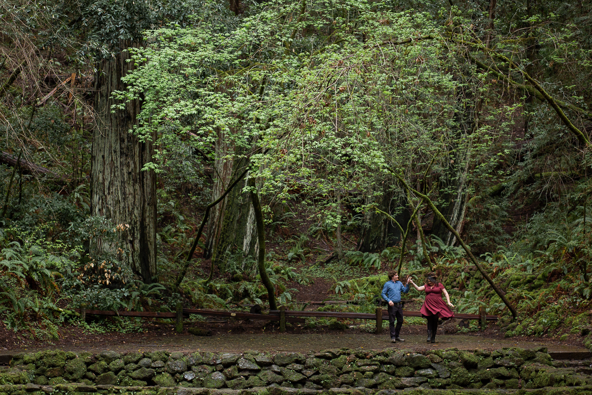 Armstrong Woods Engagement Photos Guerneville-16.jpg