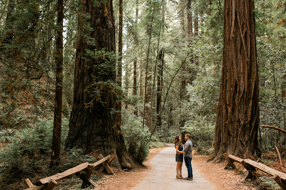 Armstrong Woods Engagement Session-1.jpg