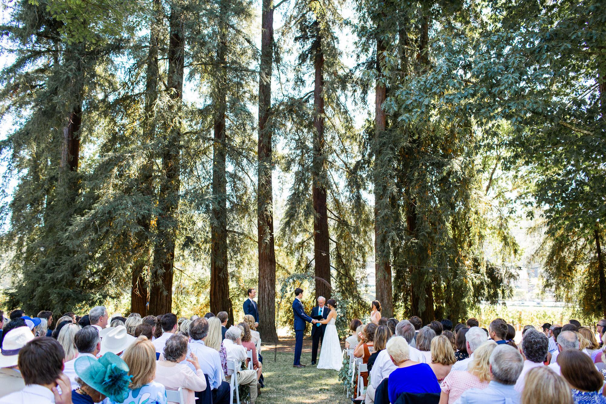 Charles Krug Winery Wedding in Napa-16.jpg