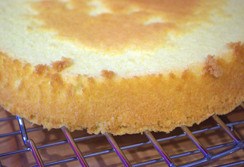 A close up of the Genoise cake
