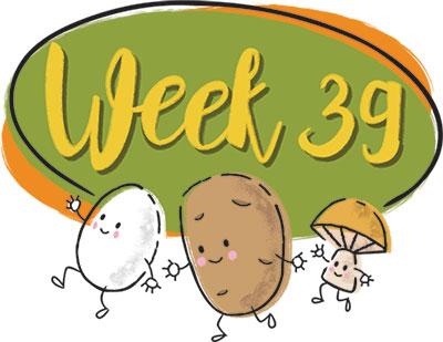 heading-week39.jpg
