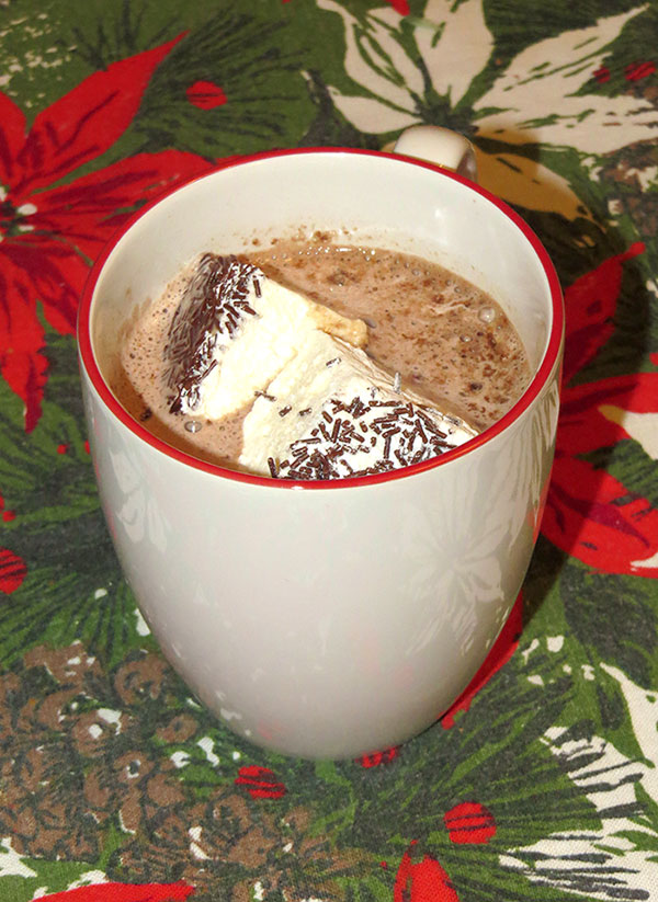 The marshmallows were perfect for hot chocolate