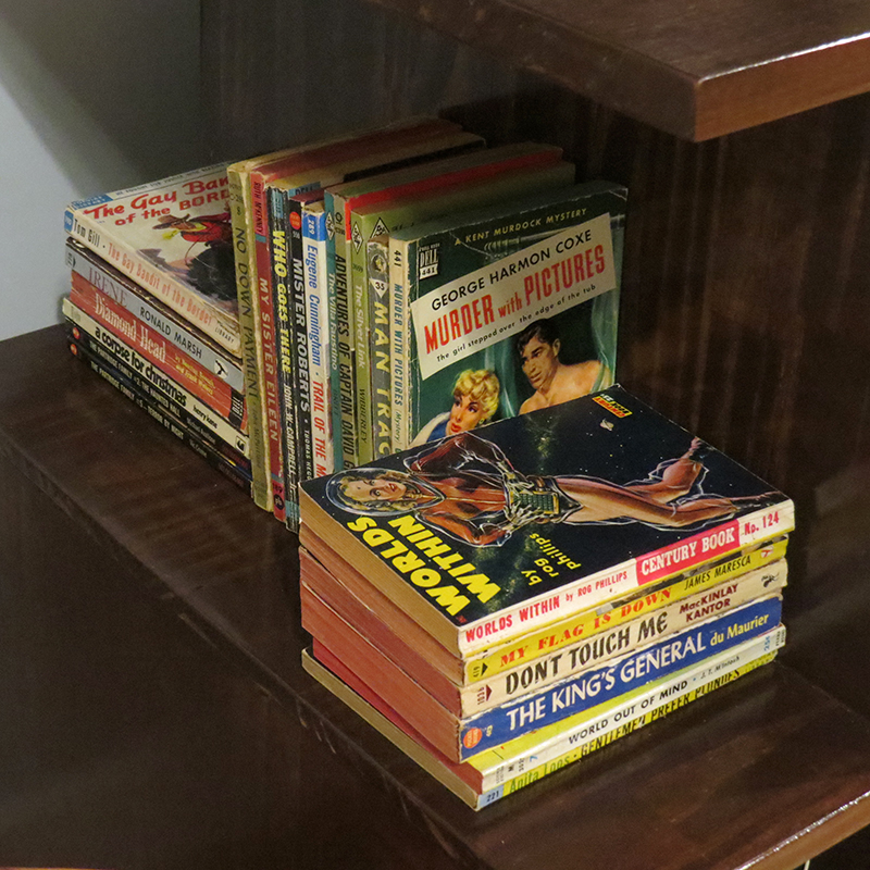 One of the outer shelves with some of the vintage paperbacks