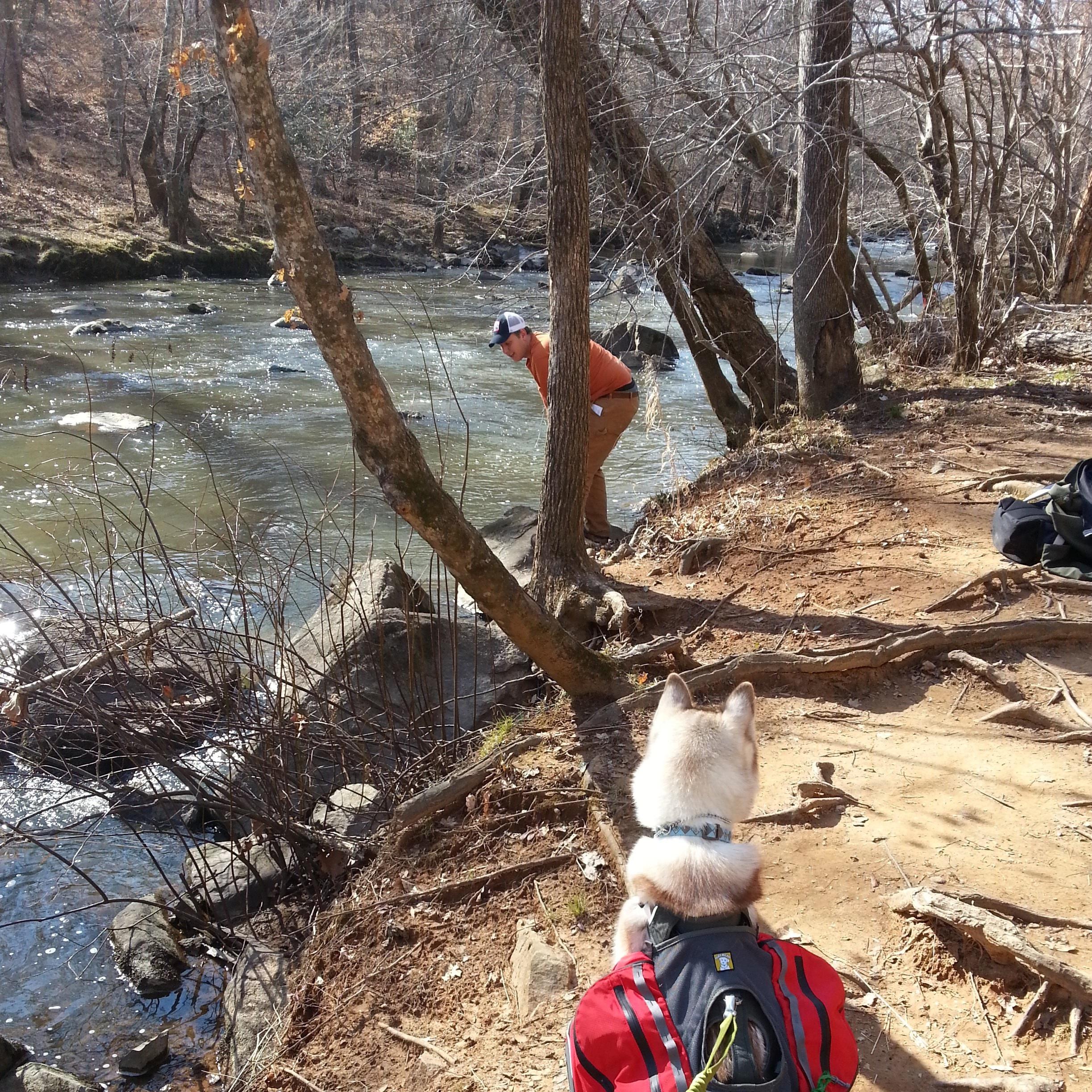 Surveying the banks at Buckquarter Creek Trail