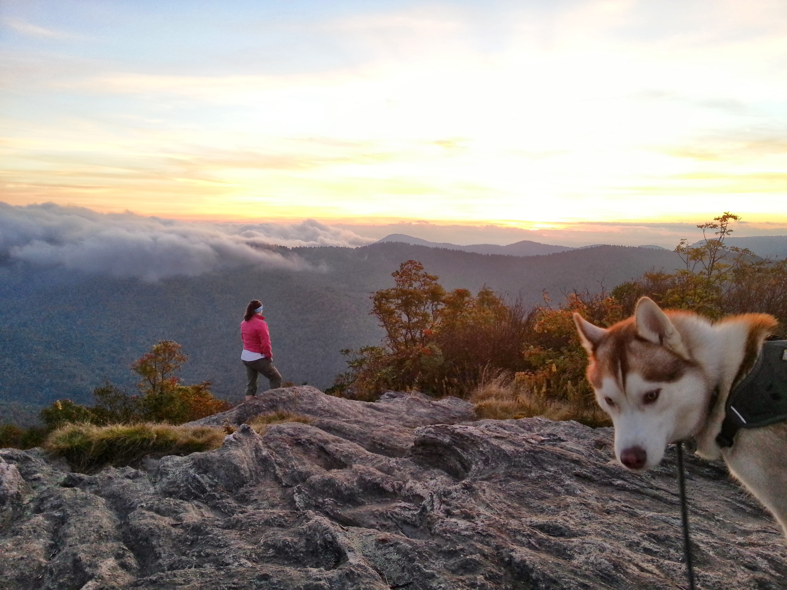 But he was not pleased when I went off to check out the view on my own (ultimate photobomb dog)