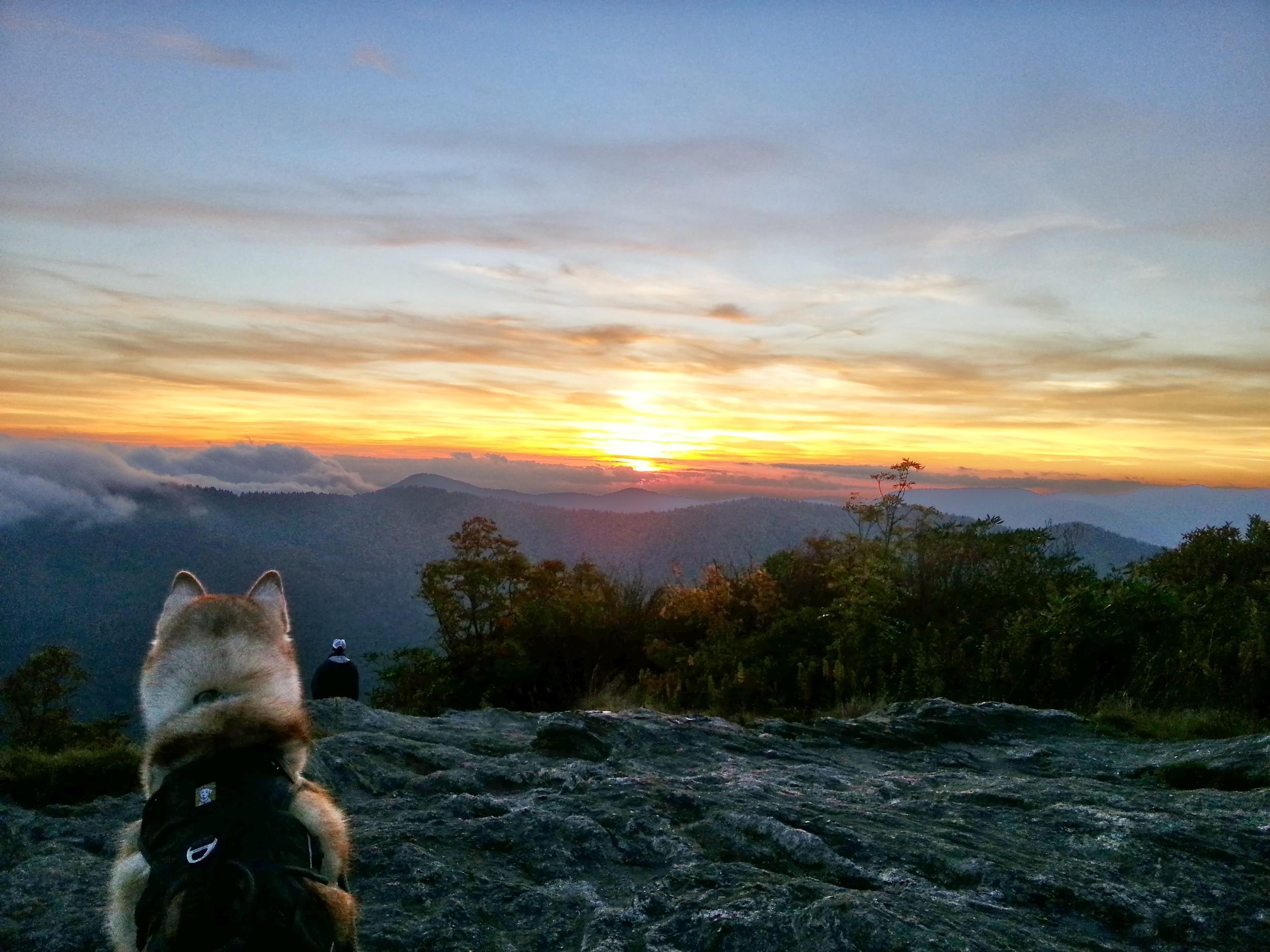 Ryder enjoyed the sunset