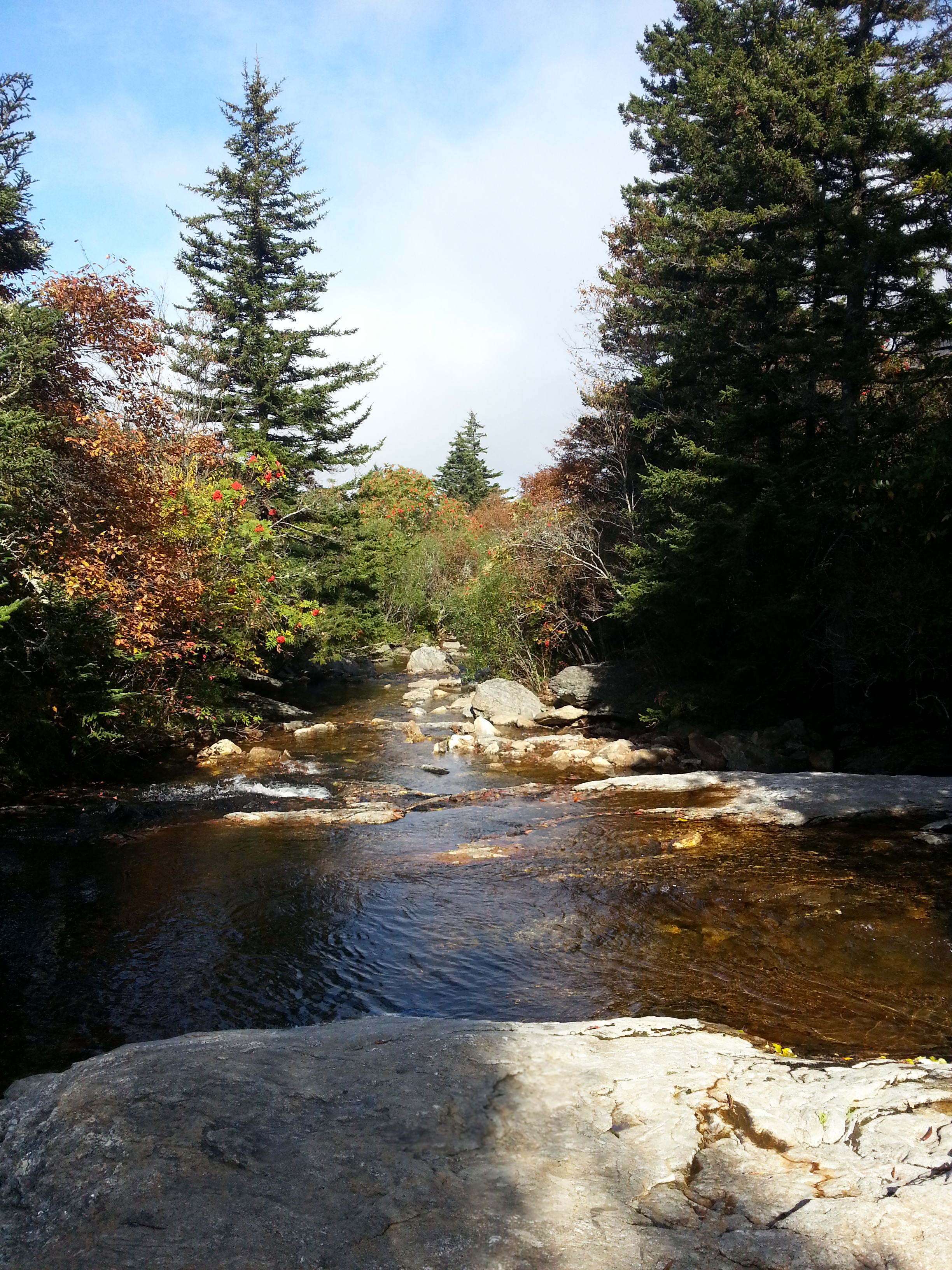Another view while crossing the creek. McCrae and Ryder were not thrilled that I dawdled on the slick rocks.