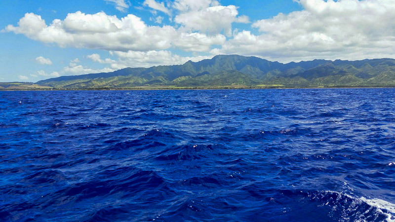 The view from the shark tour boat of Oahu, Hawaii. Yes, the water was that insanely blue. I couldn't believe it either.