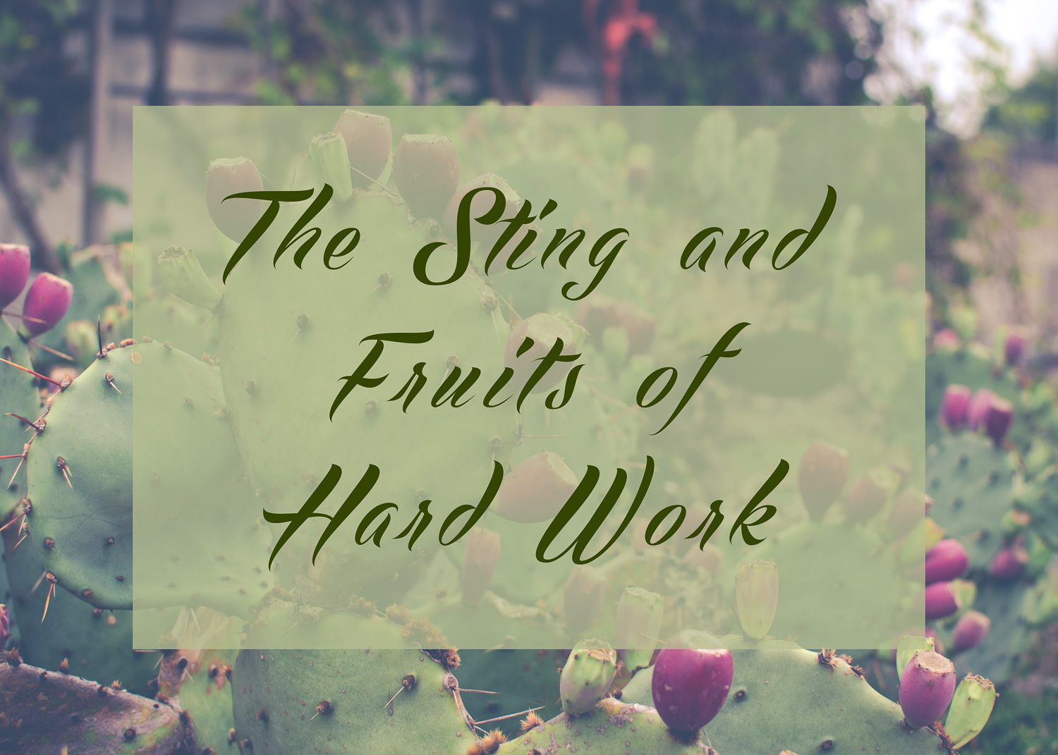 The Sting and Fruits of Hard Work