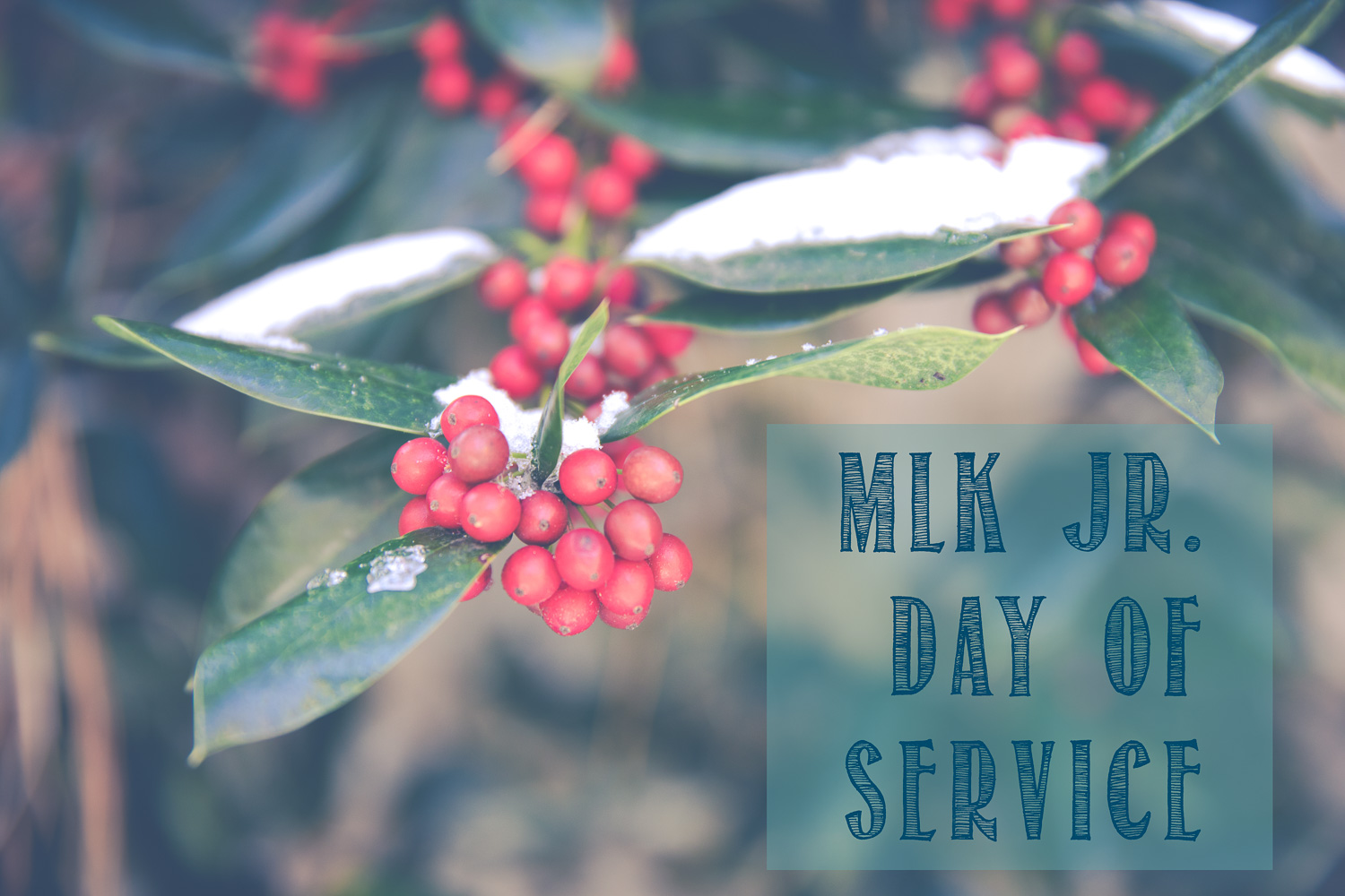 MLK Jr. Day of Service 2017