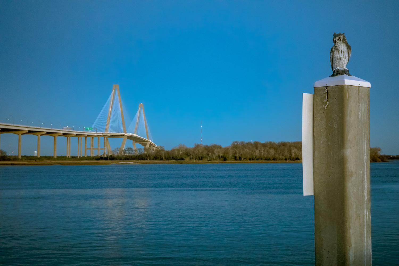 Charleston-37.jpg