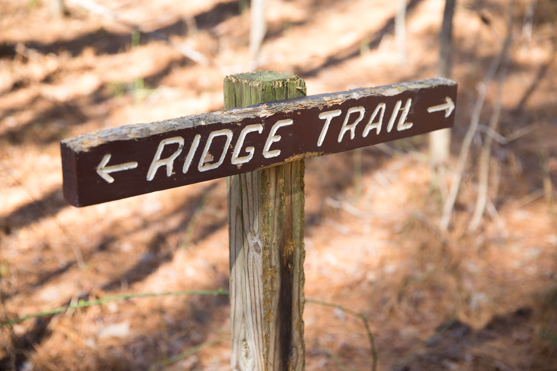 Little River Ridge Trail
